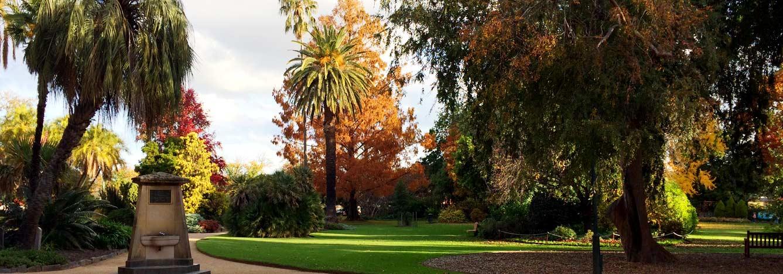تصویر--هدر-باغ-بوتانیک-آلبوری-استرالیا