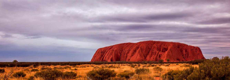 تصویر هدر سنگ بومی استرالیا