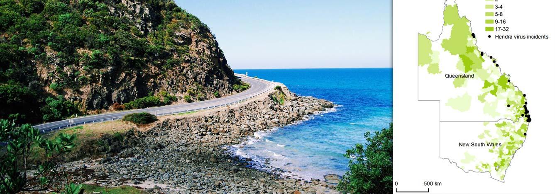 تصویر-هدر-شرق استرالیا