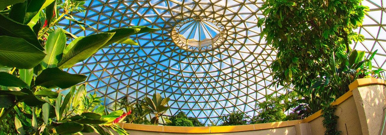 باغ گیاهشناسی شهر بریزبن