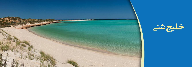 خلیج شنی